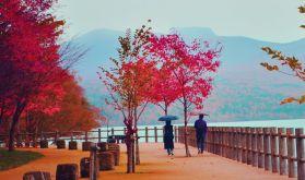 Lake Shikotse